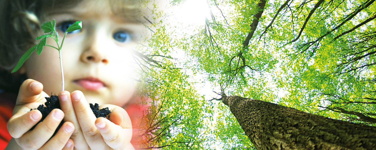 epanouissement sante belle journee forme bonheur nuage beau ciel herbe douce pure enfance nature arbre croissance racines