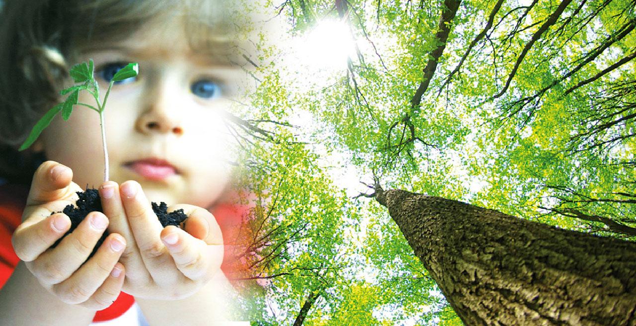 Petite fille avec une plante à la main